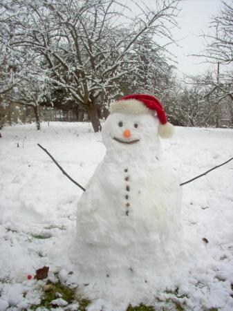medium_bonhomme_de_neige_fait_par_quentin.jpg