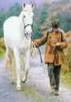 medium_cheval_3.2.jpg